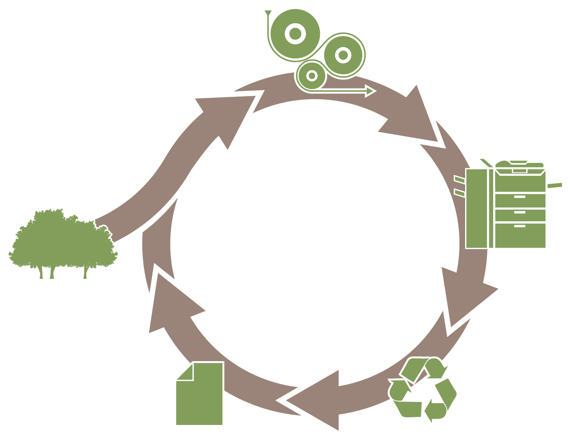 Recycling of paper help in conservation of forest explain