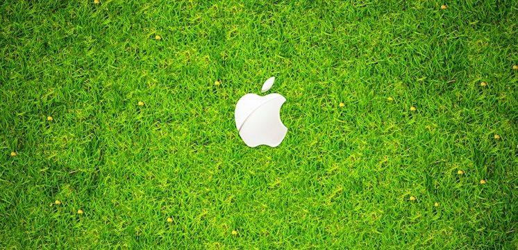 apple_green_grass-1280x1024