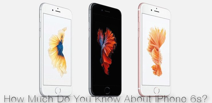 Quiz! How Much Do You Know About iPhone 6s?