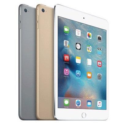 iPad Mini Pic 4