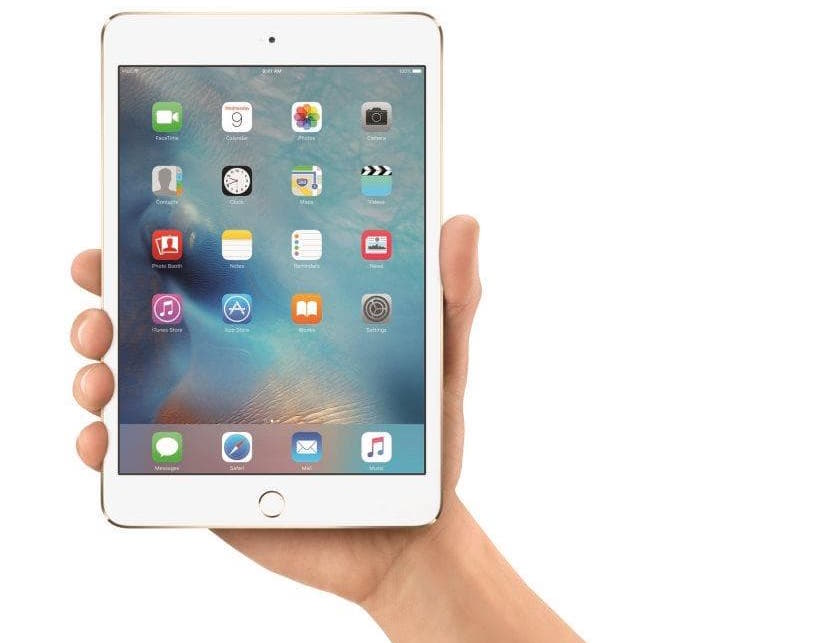 iPad Mini Pic 1