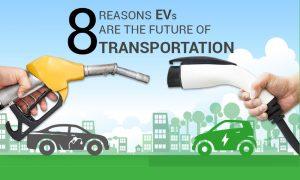 EV Information and Statistics