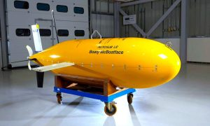 Boaty McBoatface to Embark on First Antarctic Expedition
