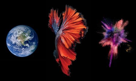 Top 5 Most Memorable iOS Wallpapers of All Time