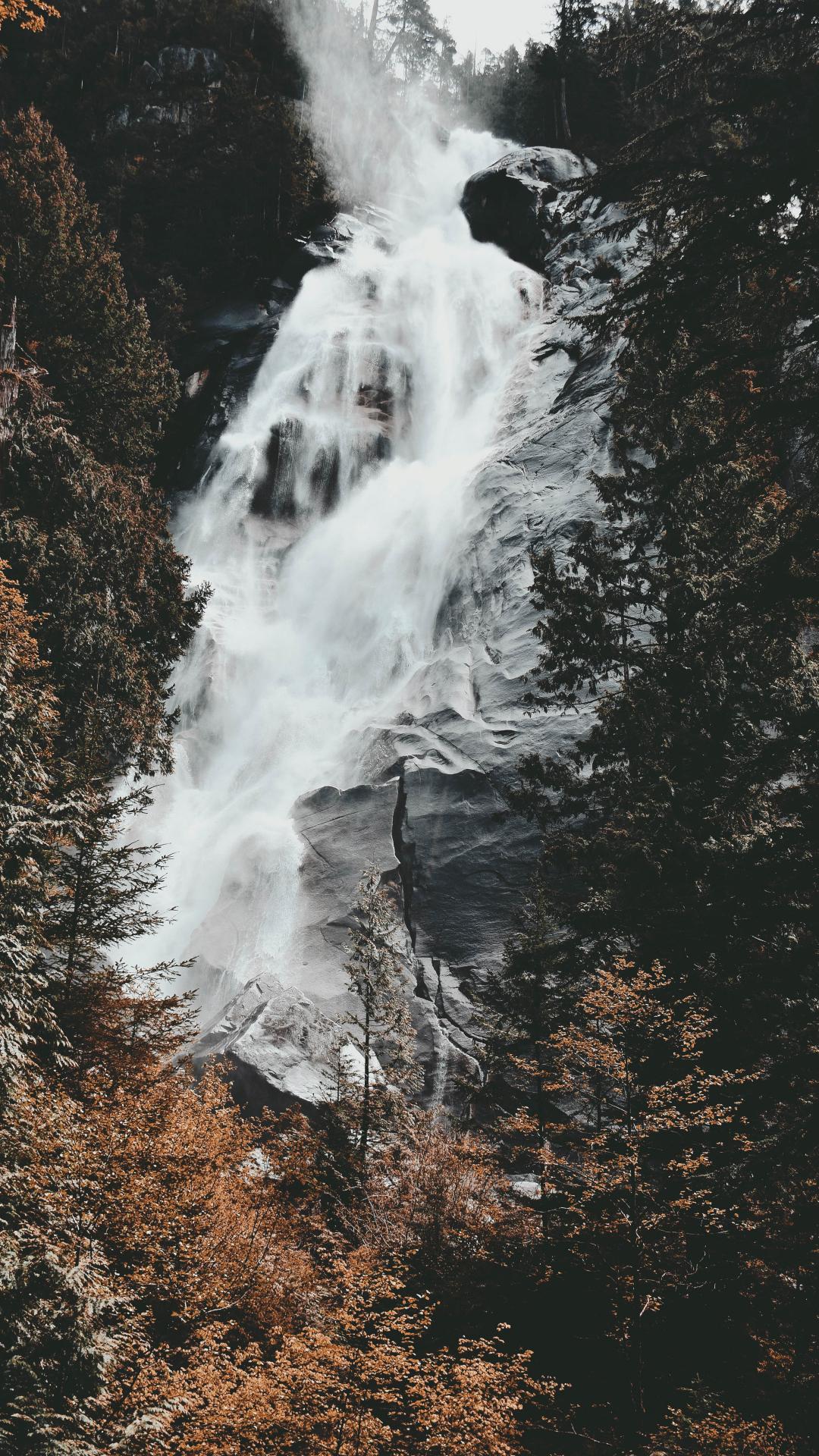 Tree, Waterfall, Wilderness, Rock iPhone Wallpaper