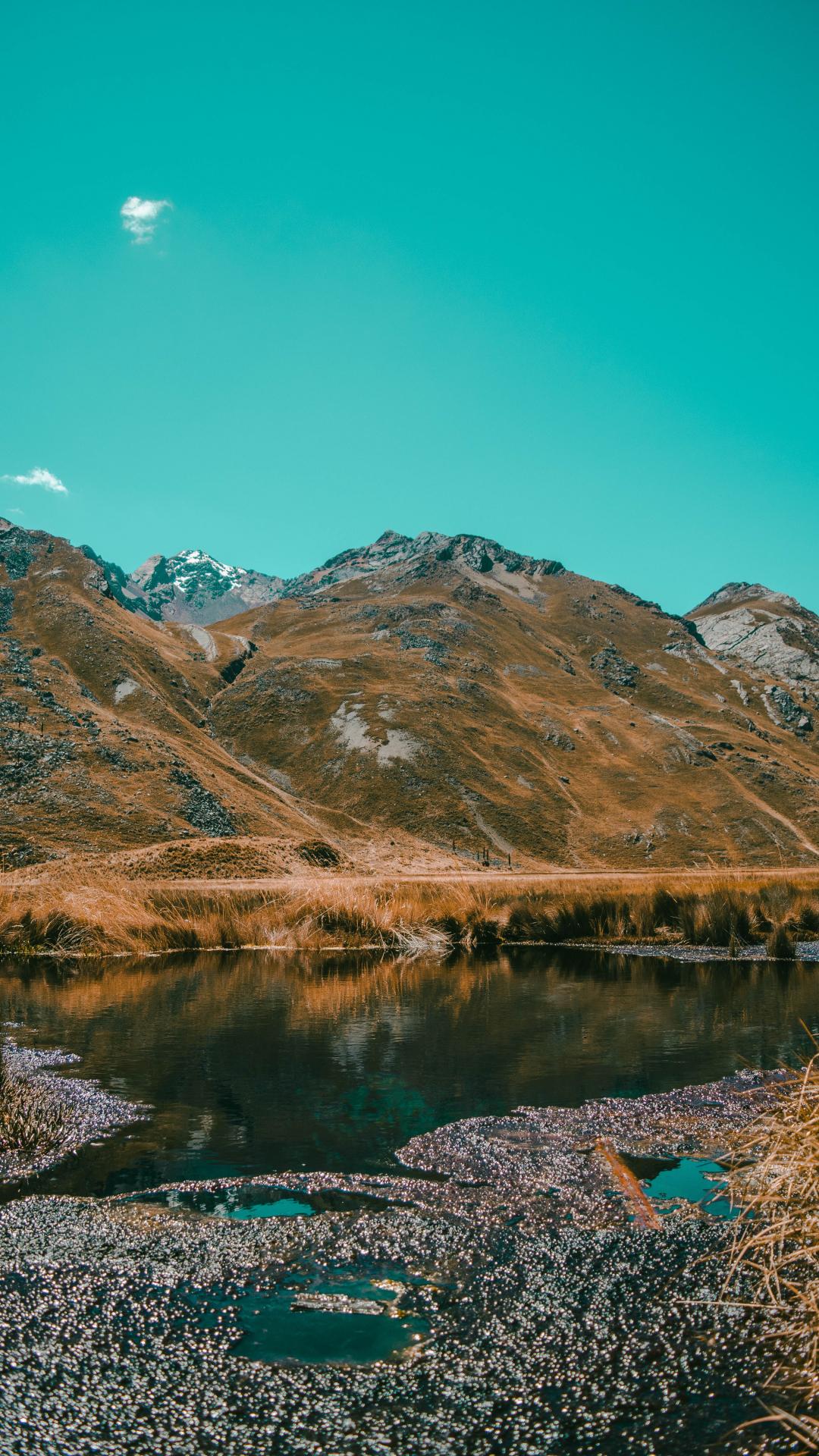 Lake, Marsh iPhone Wallpaper