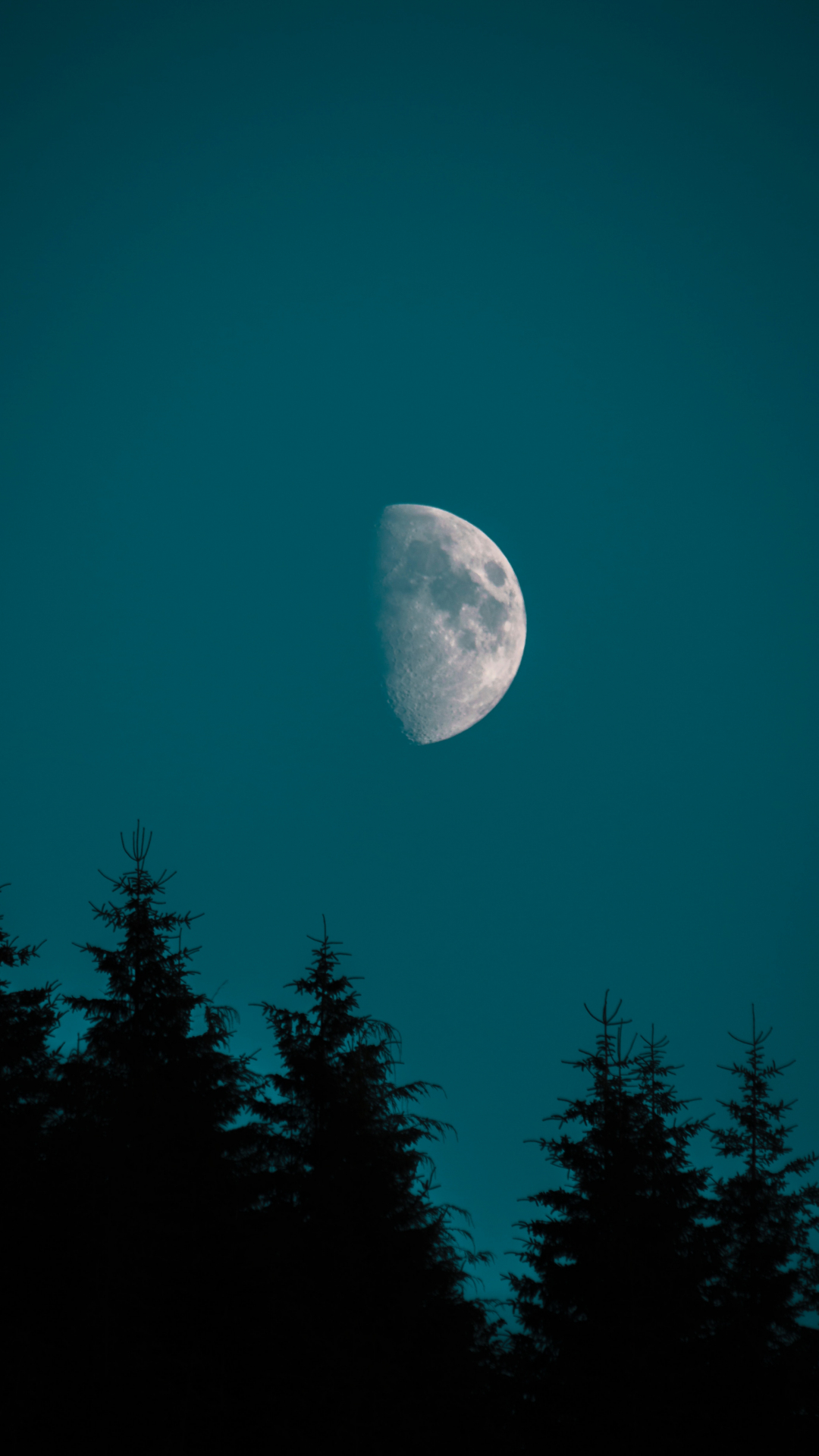 Half Moon Over Pine iPhone Wallpaper