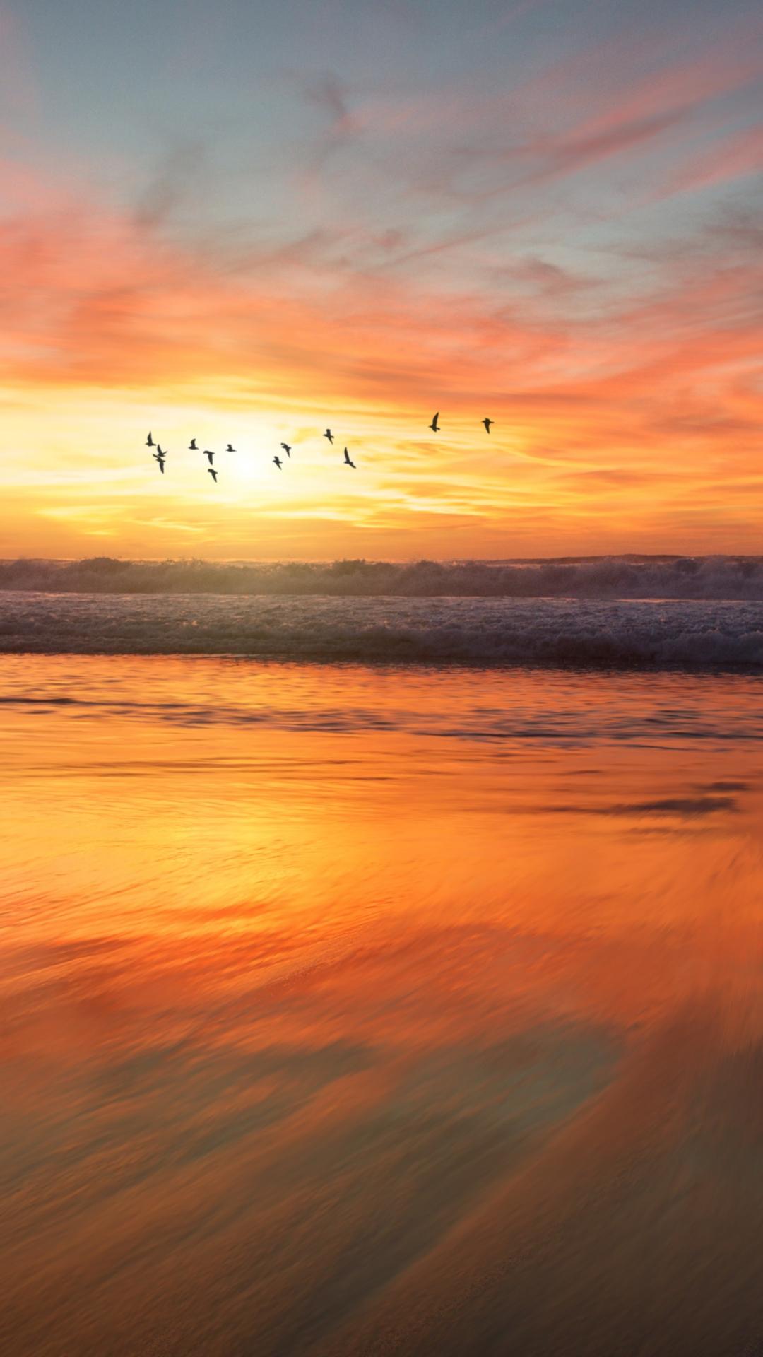 San Diego Beach Sunrise iPhone Wallpaper