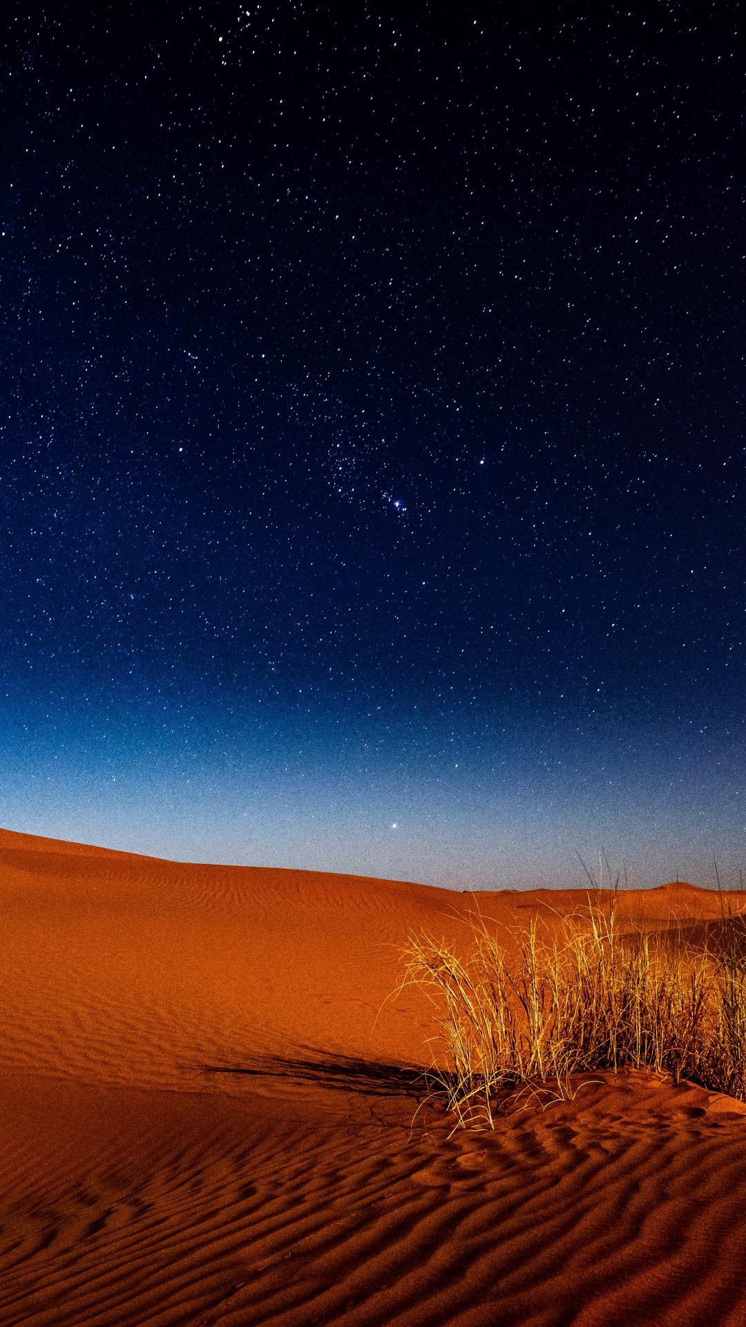 Night In The Desert iPhone Wallpaper