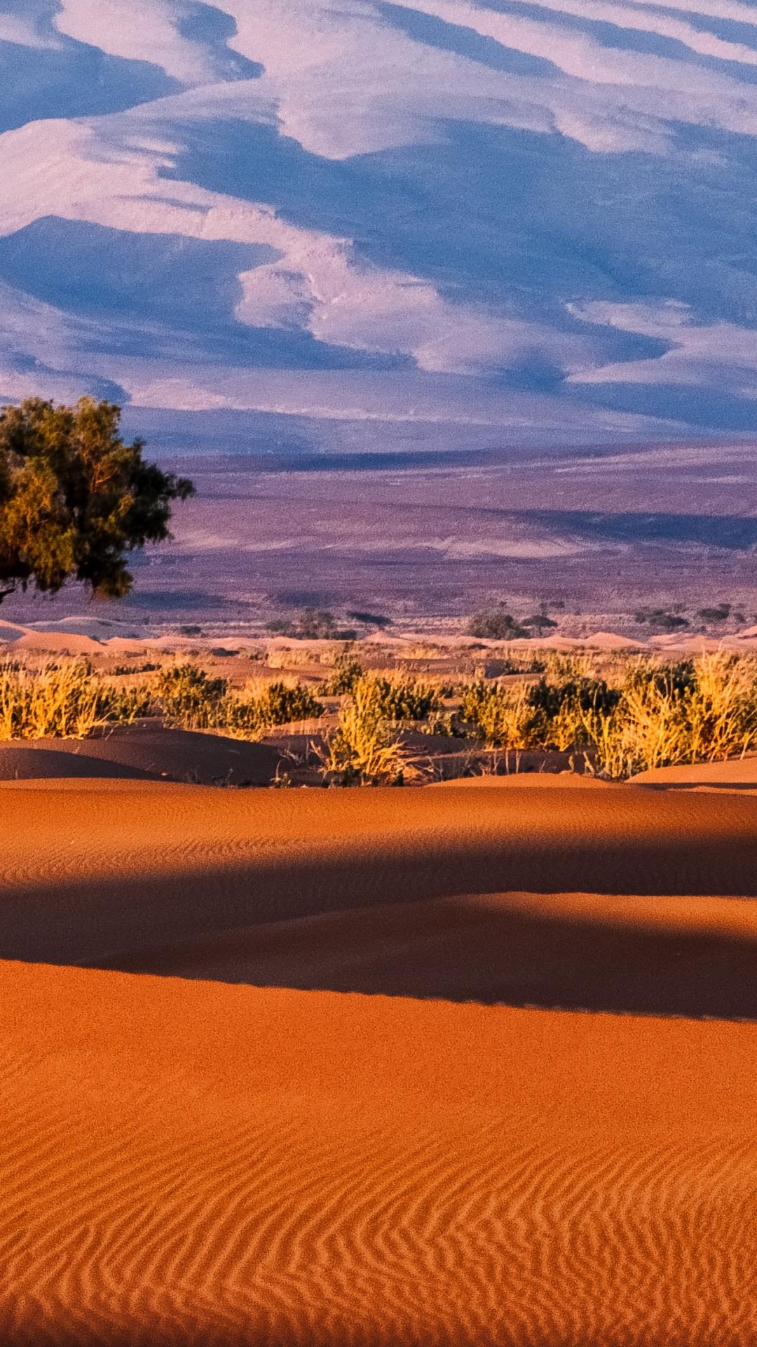 Evening In The Desert iPhone Wallpaper