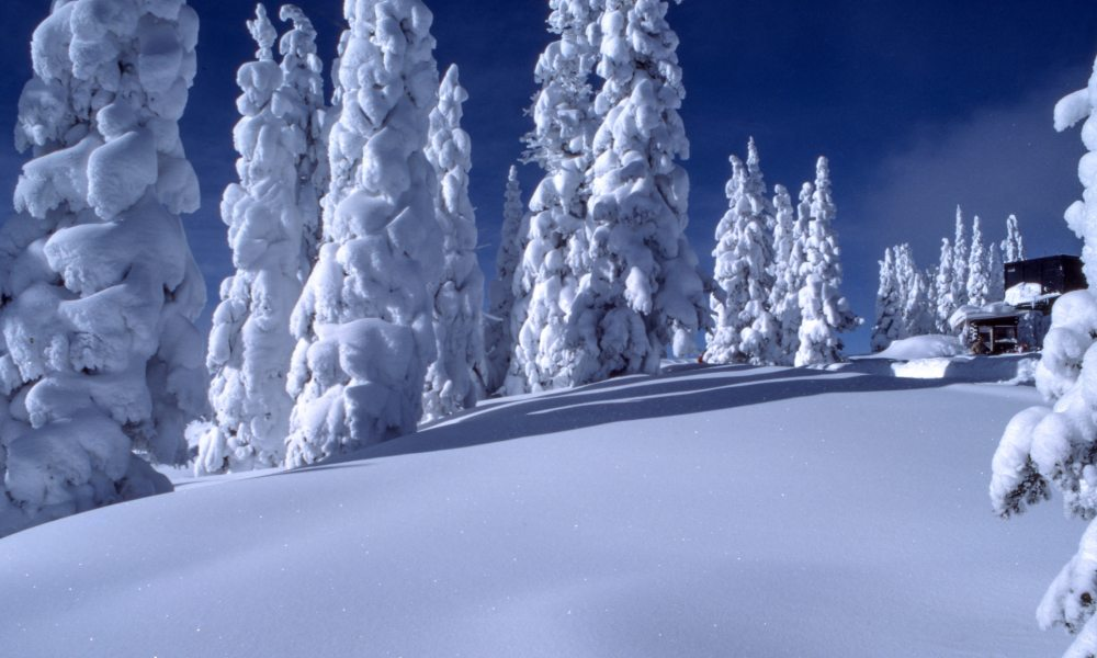 Cabin In Winter Forest Iphone Wallpaper Idrop News