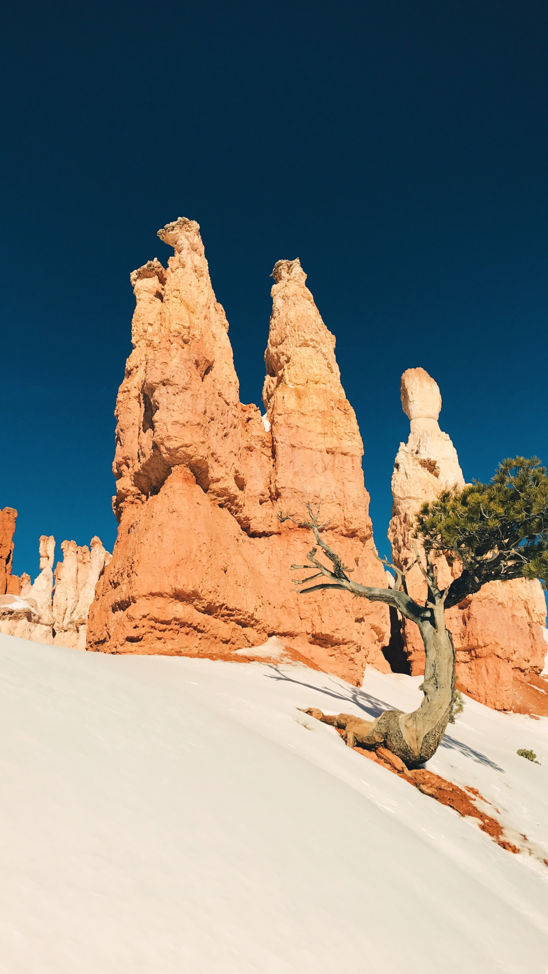 Bryce Canyon iPhone Wallpaper