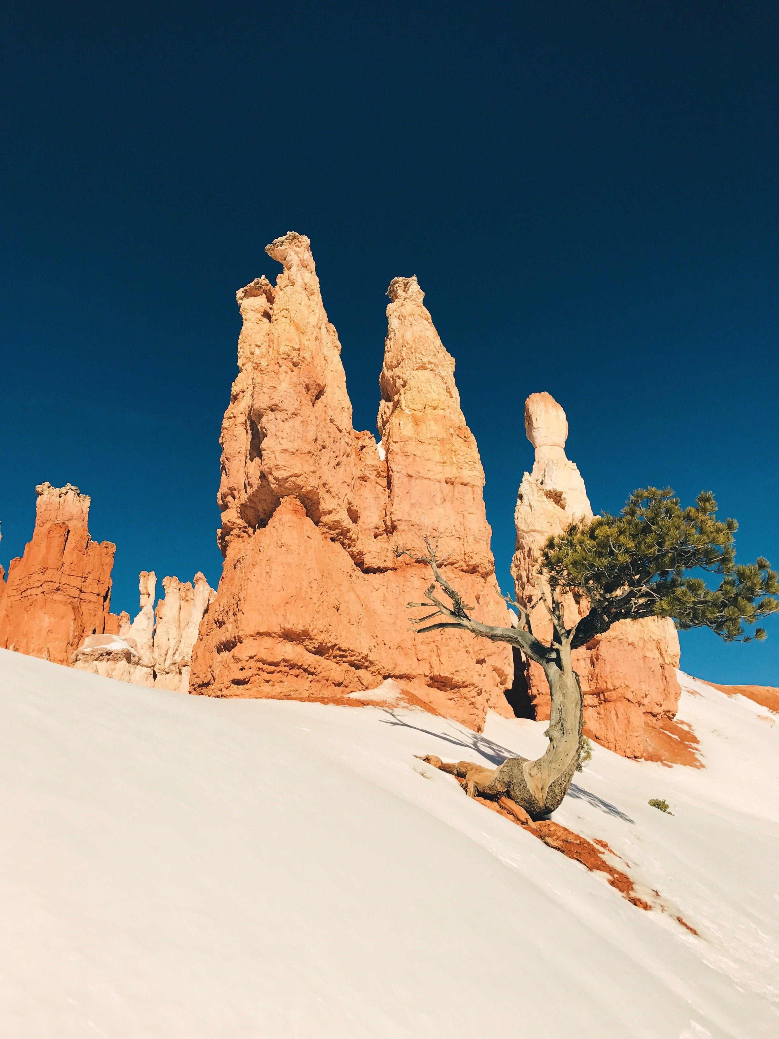 Bryce Canyon Iphone Wallpaper Idrop News
