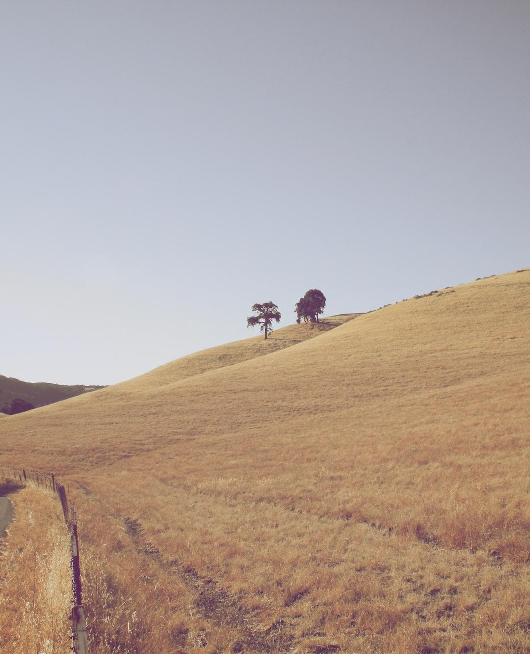 Barren Countryside iPhone Wallpaper