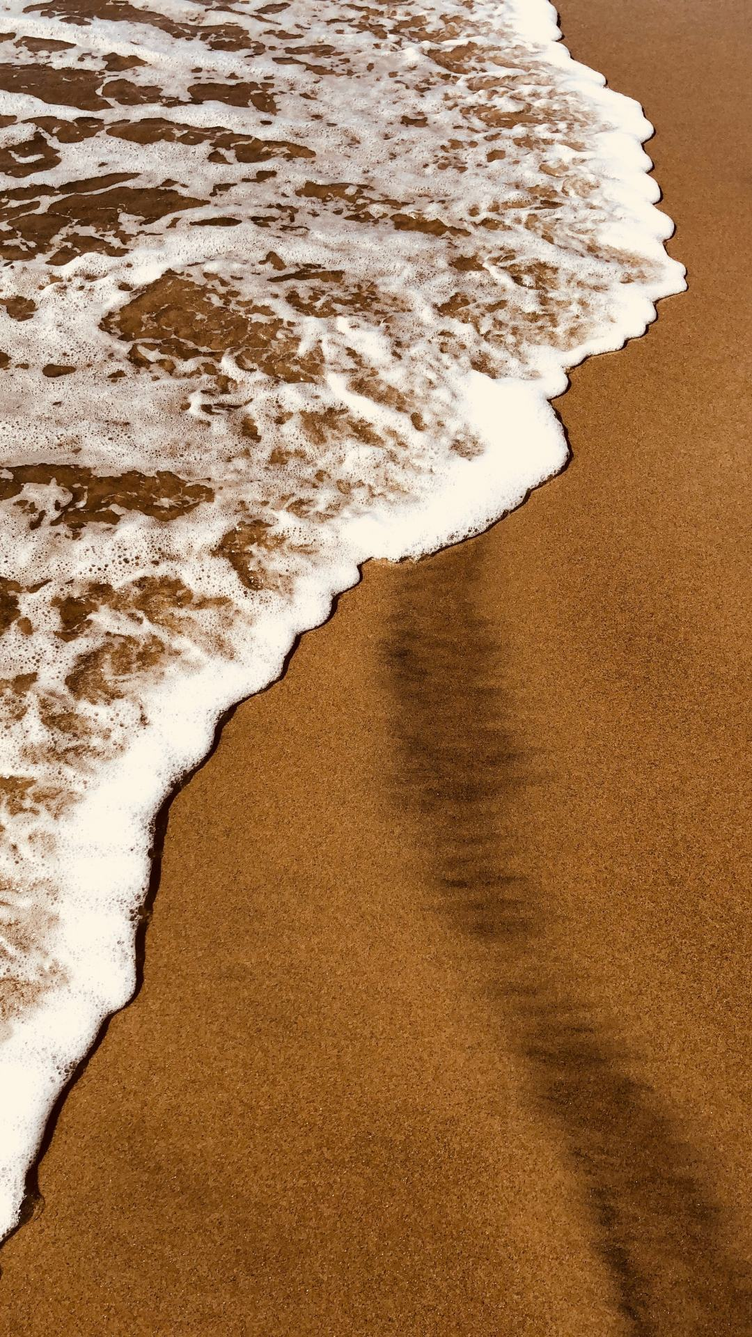 Beauty of the Ocean iPhone Wallpaper