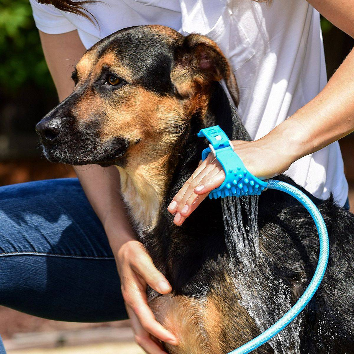 Aquapaw  - AquaPaw - 9 Life-Changing Gadgets All Pet Owners Need to Know About