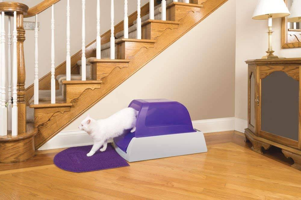 Litter Box  - litter box - 9 Life-Changing Gadgets All Pet Owners Need to Know About
