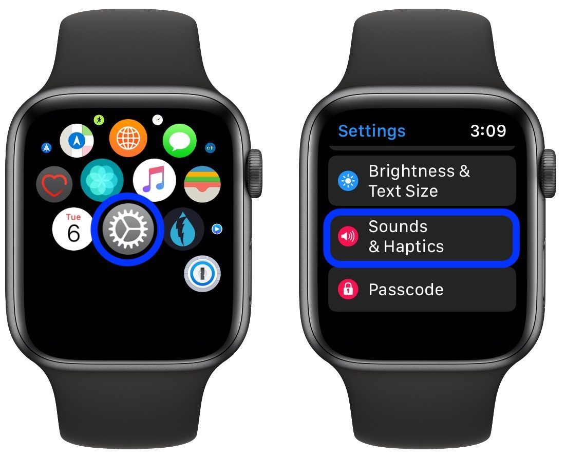 Settings Sound And Haptics Apple Watch