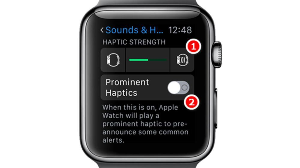 Apple Watch Haptics Settings