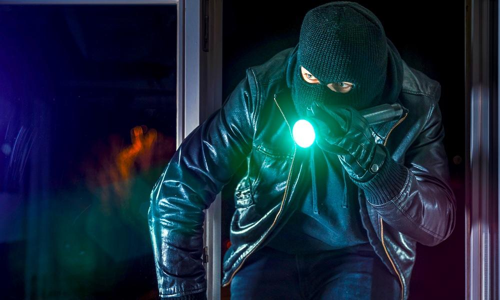 Burglar Home Intruder Thief