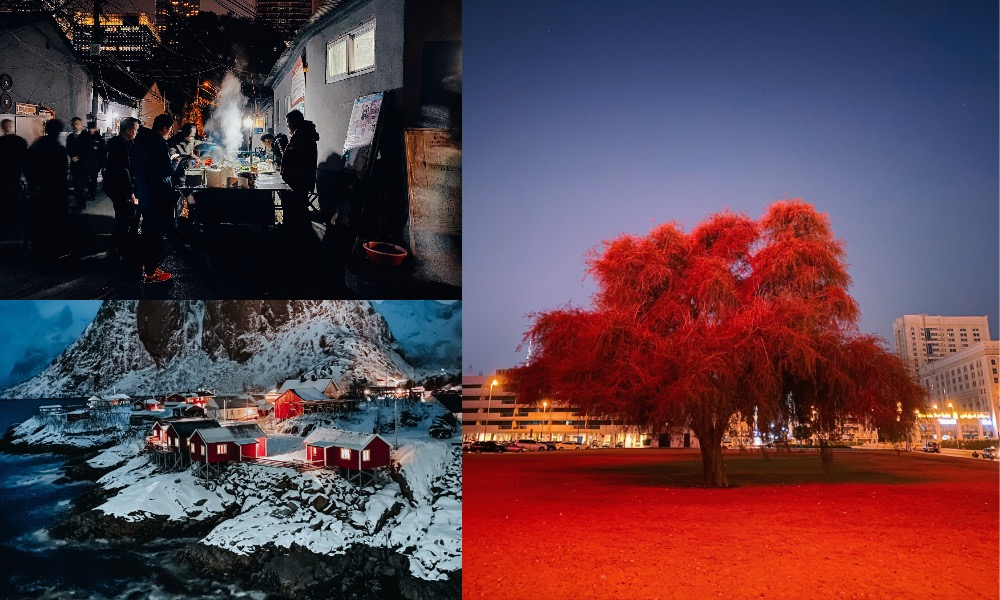 Apple Night Mode Photo Challenge Winners