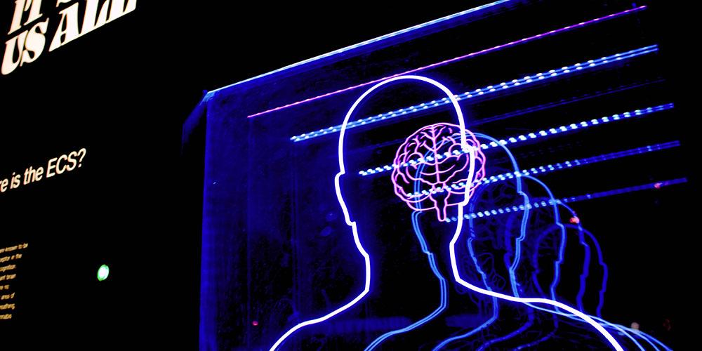 iDrop News Memory Mastery Brain Games