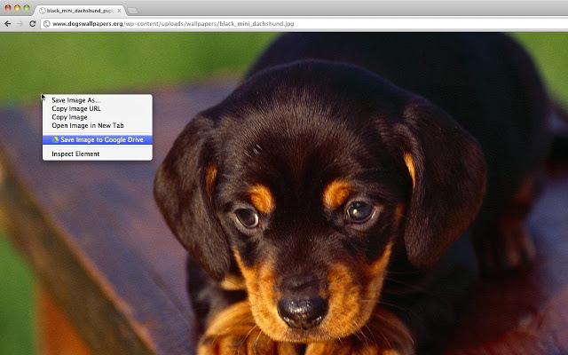 Save Photos to Google Drive