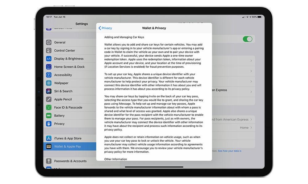Car Key Wallet Info on iPad