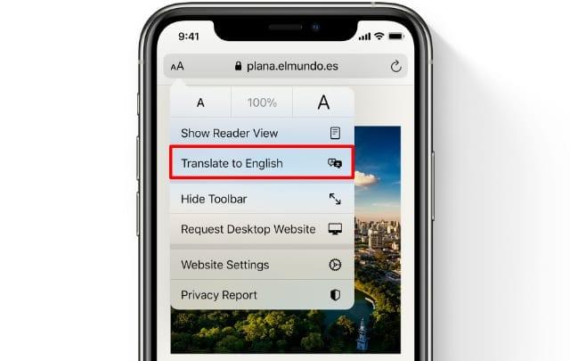Safari Translate