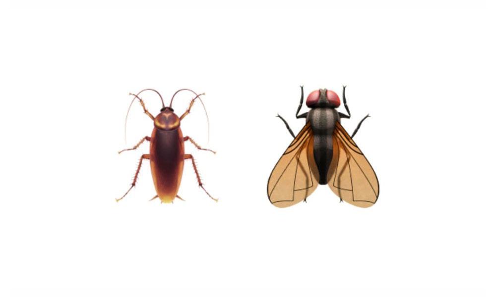 iOS 14.2 Cockroach and Fly Emoji