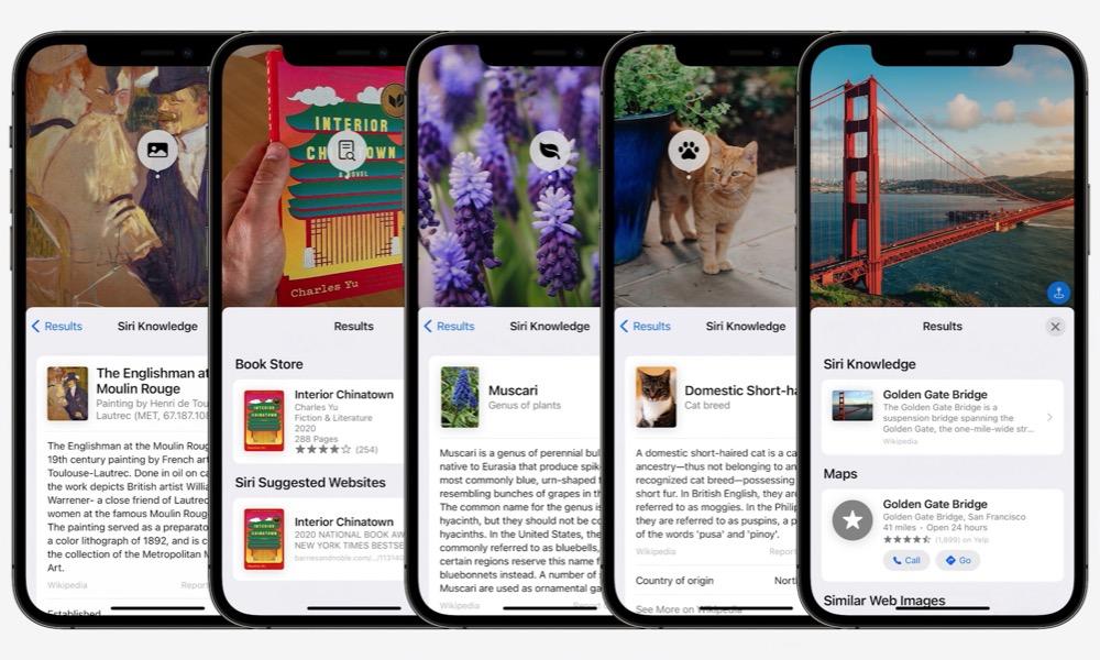 Live Text iOS 15 13